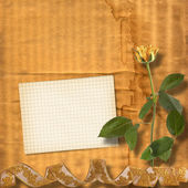 Grunge paper for congratulation with beautiful roses — Stock fotografie
