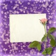 Card for invitation or congratulation with beautiful rose on the — 图库照片
