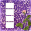 Stock Photo: Card for invitation or congratulation with beautiful rose on the