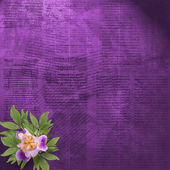Old newspaper background with bunch of flower — Stock Photo