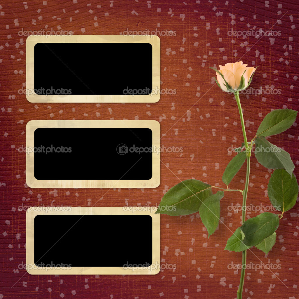 Grunge background for congratulation with beautiful rose — Stock Photo #5851155
