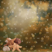Sea stars on the abstract paper blur bokeh background — Stock Photo