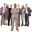 Young attractive business - the elite business team — Stock Photo #5386064