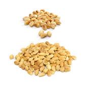 Roasted Peanuts — Stock Photo