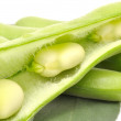 Broad Beans Close-up — Stock Photo