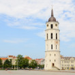 Vilnius Cathedral Bell Tower - Stock Photo