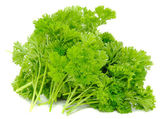 Bunch of Curly Parsley — Stock Photo