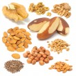 Stock Photo: Set of Nuts (Walnuts, Brazil Nuts, Almonds, Peanuts, Hazelnuts, Pine Nuts