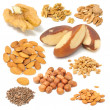 Set of Nuts (Walnuts, Brazil Nuts, Almonds, Peanuts, Hazelnuts, Pine Nuts — Stock Photo