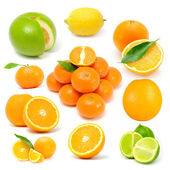 Citrus Fruit Set (Grapefruit, Lemon, Orange, Tangerine, Lime) — Stock Photo
