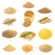 Grain and Cereal Set Isolated on White Background — Stock Photo #6663066