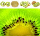 Kiwi Fruit Set — Stock Photo