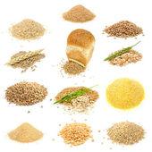 Grãos e cereais definidas isolado no fundo branco — Foto Stock