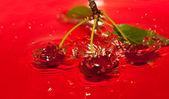 Water Cherries — Stock fotografie