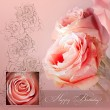 Pink roses card to Birthday — Stock Photo #5699560