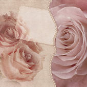 Pink roses card — Stock Photo