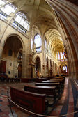 Interior of gothic cathedral — Stock Photo