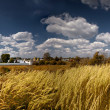 Suzdal panorama — Stock Photo #6503761