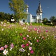 church in suzdal — Stock Photo