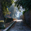 Pompeii garden - Stock Photo