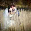 Couple in autumn field — Stock Photo #6554774