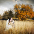 Couple in autumn field — Stock Photo #6554775