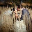 Couple in autumn field — Stock Photo #6554779