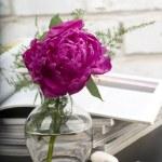 Peony flower boquet — Stock Photo #6728079