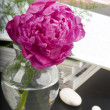 Stock Photo: Peony flower boquet