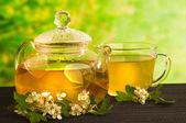 Phytothérapie, thé à la fleur d'aubépine — Photo