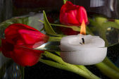 Tulips and candle — Stock Photo