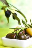 Tasting olive — Stock Photo