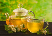 Herbal medicine, tea with hawthorn flower — Stock Photo