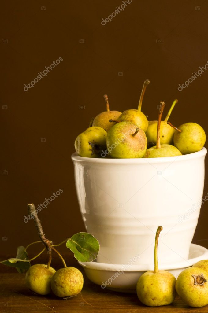 Wild pear still life   Stock Photo #6728629