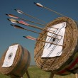 Training in archery on open air. - Stock Photo