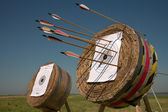 Training in archery on open air. — Foto de Stock