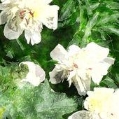 Art floral grunge background — Stock Photo