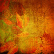Stock Photo: Art floral autumn vintage background