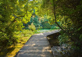 Pathway in KRKA park at Croatia — Stock Photo