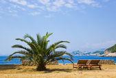 стулья на пляже в дубровник, хорватия — Стоковое фото