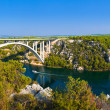 river krka and bridge in croatia — Stock Photo