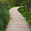 Pathway in Plitvice lakes park at Croatia — Stock Photo