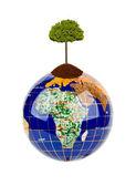 Globe and tree — Stock Photo