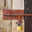 Stock Photo: Old door and lock