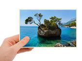 Chorwacja fotografii w ręku — Zdjęcie stockowe