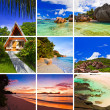 Stock Photo: Collage of summer beach images