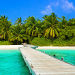 Jetty, beach and jungle — Stock Photo