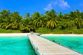 Jetty, beach and jungle — Foto Stock