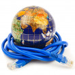 Globe and internet cable - Stock Photo