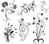 Vektor blomdekor på white.black grafiska element — Stockvektor